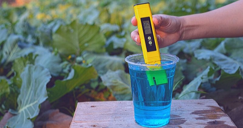 a picture of a ph meter in use