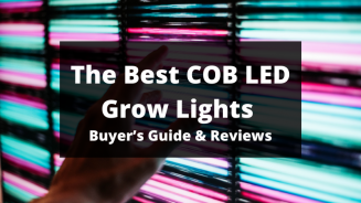 5 Best COB LED Grow Lights – Buyer's Guide & Reviews